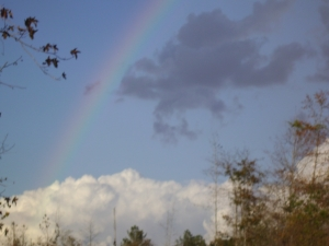 Rainbow over Holley Hill